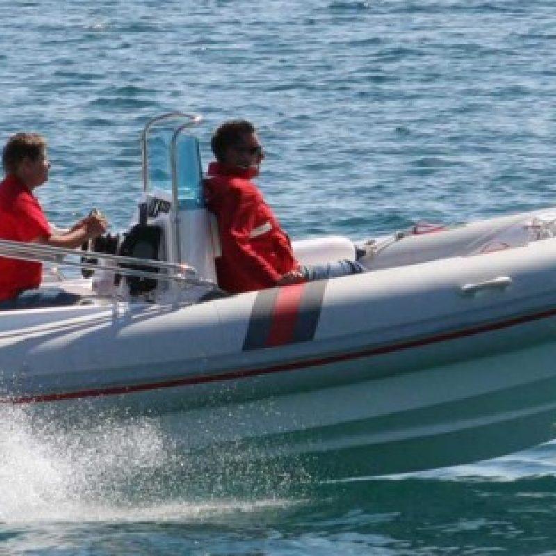 barracuda-590